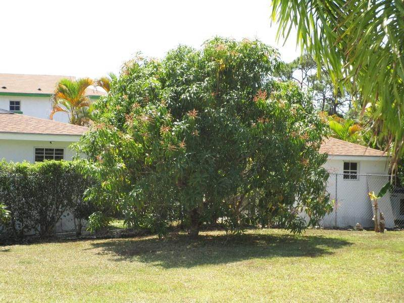 11. Multi Family for Rent at All Inclusive Rental Coral Lakes, Coral Harbour, Nassau And Paradise Island Bahamas