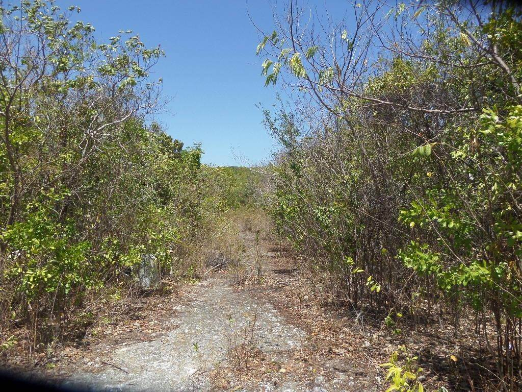 3. Land for Sale at Stella Maris, Long Island, Bahamas