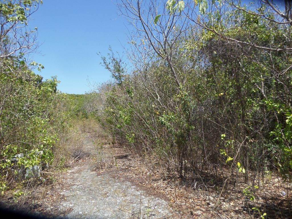5. Land for Sale at Stella Maris, Long Island, Bahamas