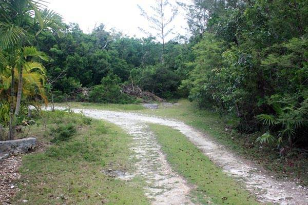 Terreno por un Venta en Close to Nature, Close to Town. Have it both ways, Great Cistern, Abaco MLS 19032 Marsh Harbour, Abaco, Bahamas