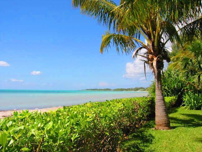 Terreno por un Venta en Commercial Tourism-Zoned Acreage Fortune Beach, Gran Bahama Freeport, Bahamas
