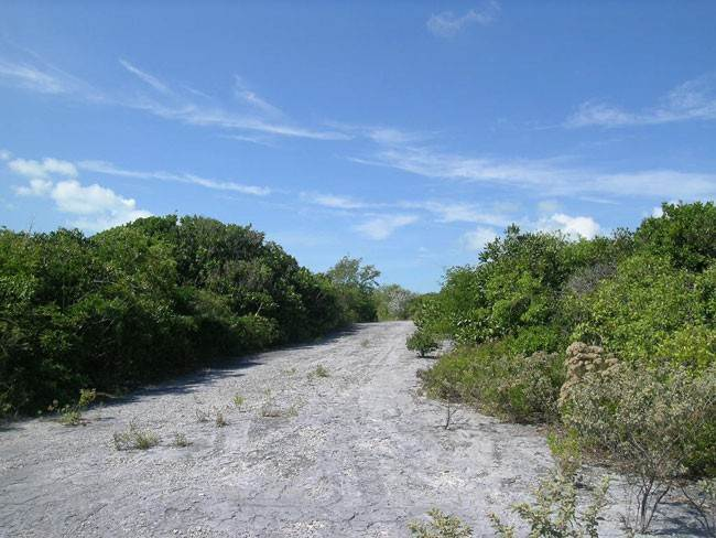Land for Sale at Affordable Stella Maris Lot Stella Maris, Long Island, Bahamas