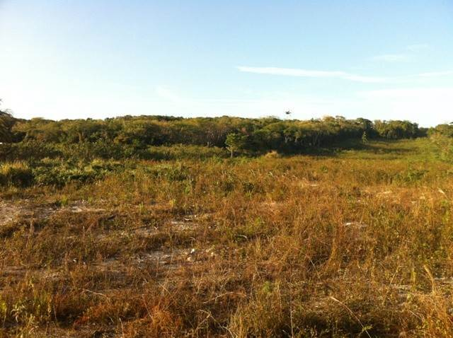Land for Sale at Large vacant land in the west Tropical Gardens, Nassau And Paradise Island, Bahamas