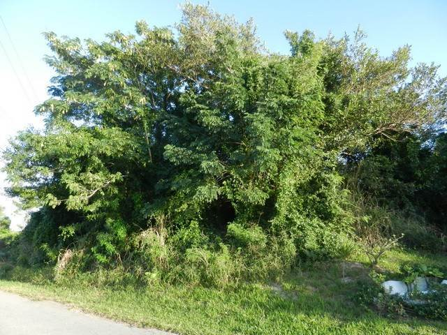 Terreno por un Venta en Well located residential lot in Coral Lakes Coral Harbour, Nueva Providencia / Nassau, Bahamas