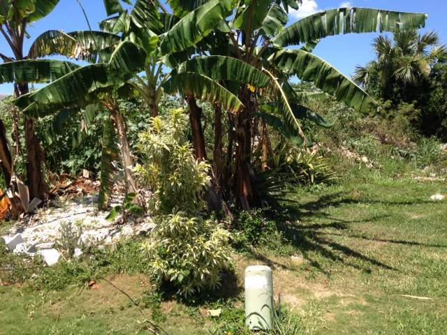 Land for Sale at Acreage at South Hillside Estate Nassau And Paradise Island, Bahamas