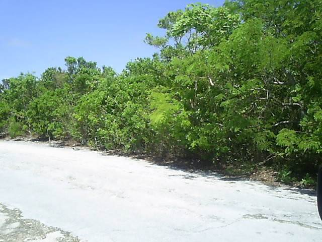 Land for Sale at Large Elevated Lot Stella Maris, Long Island, Bahamas