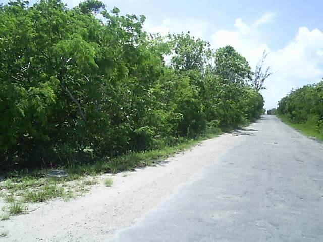 Terreno por un Venta en Large Elevated Stella Maris Lot Stella Maris, Long Island, Bahamas