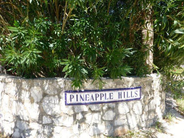 Land for Sale at Fabulous Estate Lot G-1, Pineapple Hills in Gregory Town, Eleuthera! Gregory Town, Eleuthera, Bahamas