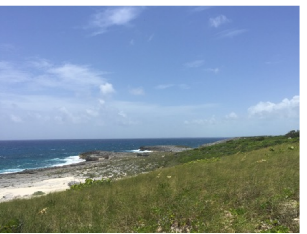 Land for Sale at Deadman's Cay Acreage - MLS 28893 Long Island, Bahamas