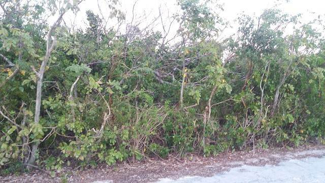 Terreno por un Venta en Affordable Lot in Stella Maris - MLS 29654 Stella Maris, Long Island, Bahamas