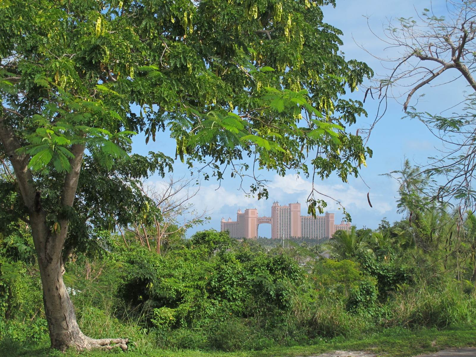Terreno por un Venta en Prime Commercial Land for Sale in Central Location Centreville, Nueva Providencia / Nassau, Bahamas