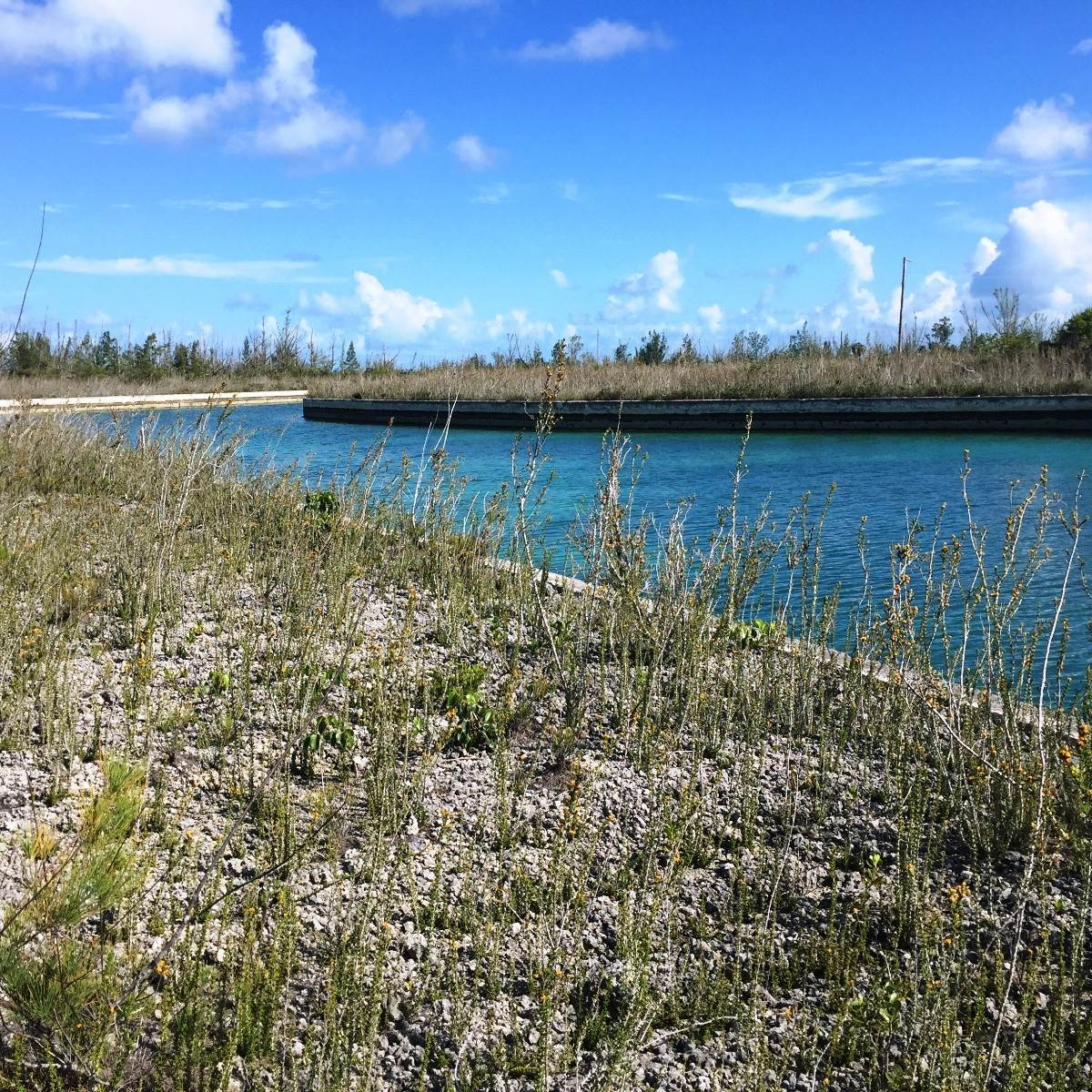Land for Sale at Affordable Canal Lot - MLS #34735 Dover Sound, Freeport And Grand Bahama, Bahamas