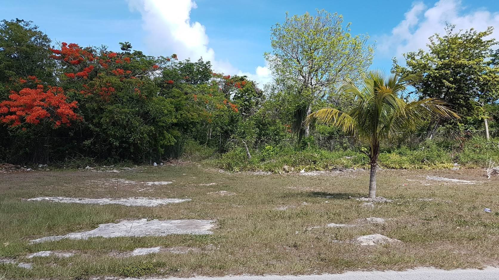 Land for Sale at Large Lot at St. Augustine's Monastery Bernard Road, Nassau And Paradise Island, Bahamas