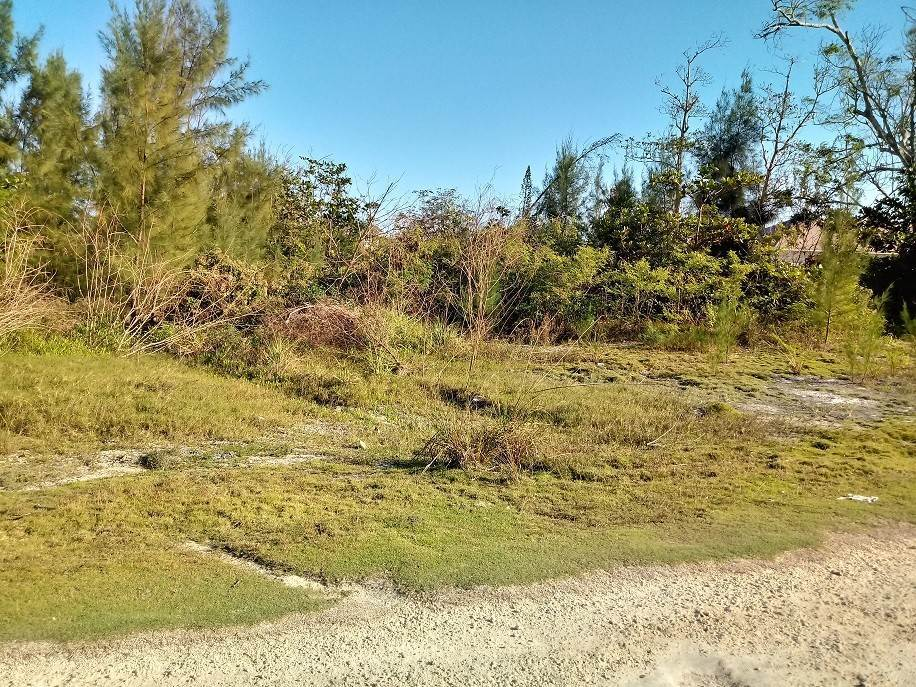 Commercial for Sale at 2.98 Acres on Sale - South Beach, Blue Hill Road South Beach Estates, Nassau And Paradise Island, Bahamas