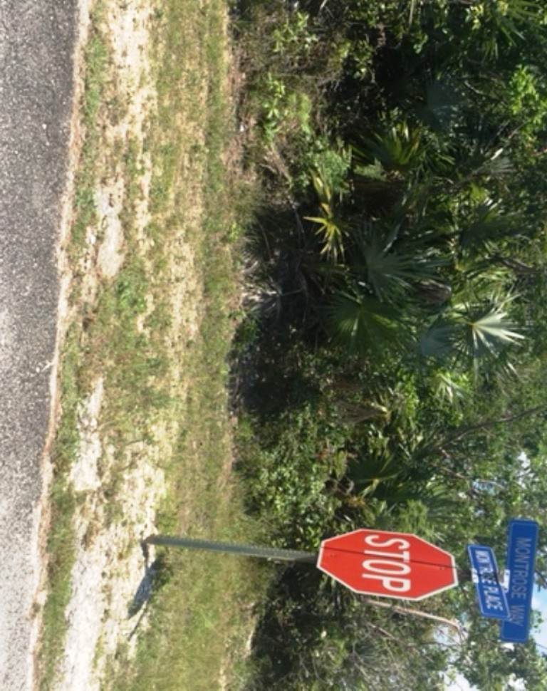 Land for Sale at Single Family Vacant Lot in Bahamia West Replat Montrose Way - MLS 34063 Bahamia, Freeport And Grand Bahama, Bahamas