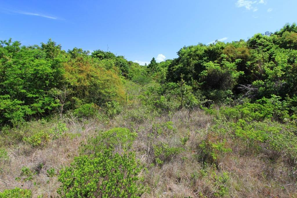 Land for Sale at Two For The Price Of One! MLS 33843 Schooner Bay, Abaco, Bahamas