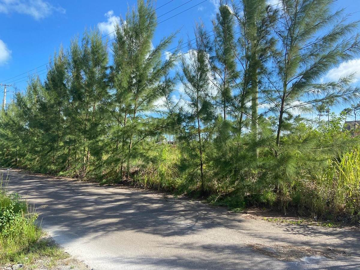 Terreno por un Venta en Large Multi-family Residential Lot off Cowpen Road - MLS 41646 Cowpen Road, Nueva Providencia / Nassau, Bahamas
