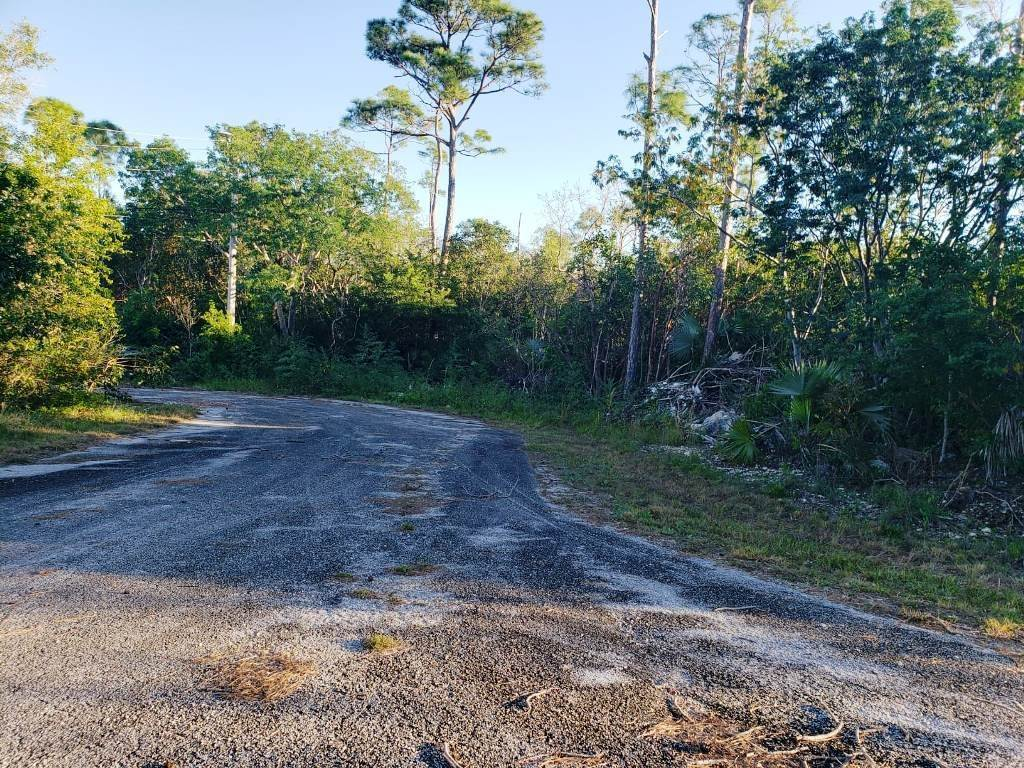 Land for Sale at Nicely Priced Duplex Lot in Fortune Point - MLS 36371 Fortune Point, Freeport And Grand Bahama, Bahamas
