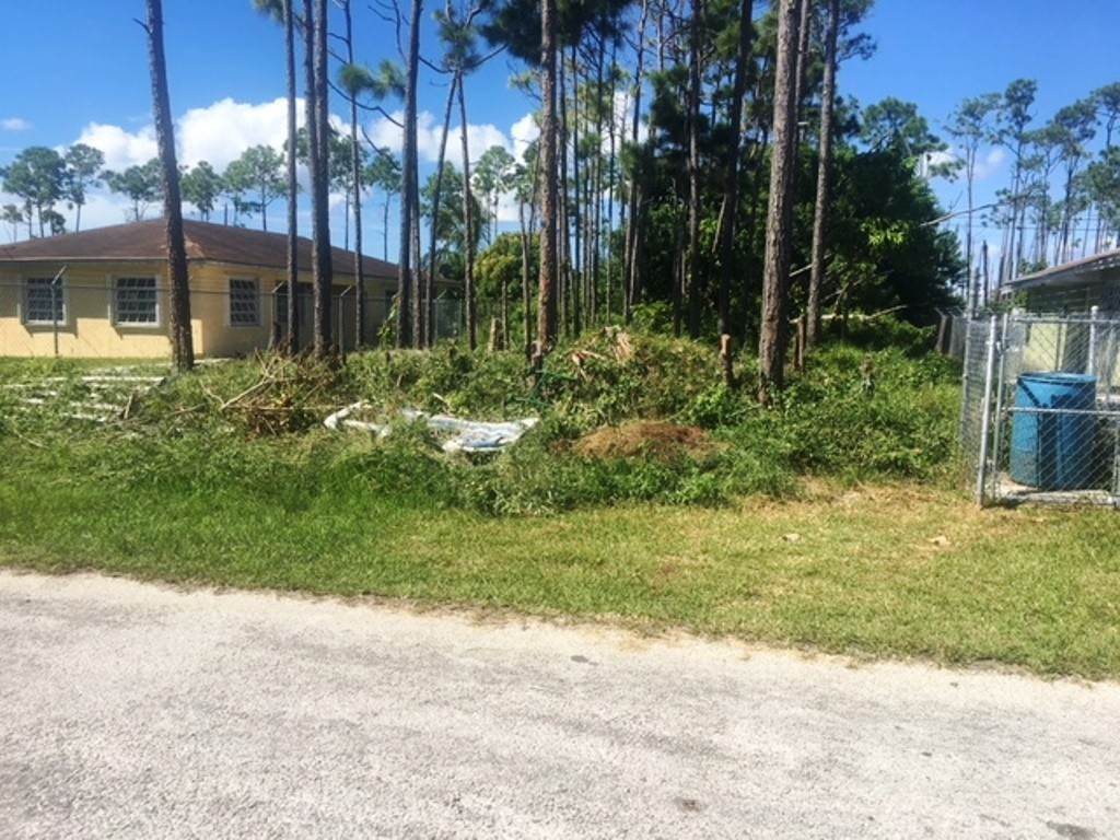 Terreno por un Venta en Single Family Lot Hudson Estate Hudson Setates, Gran Bahama Freeport, Bahamas