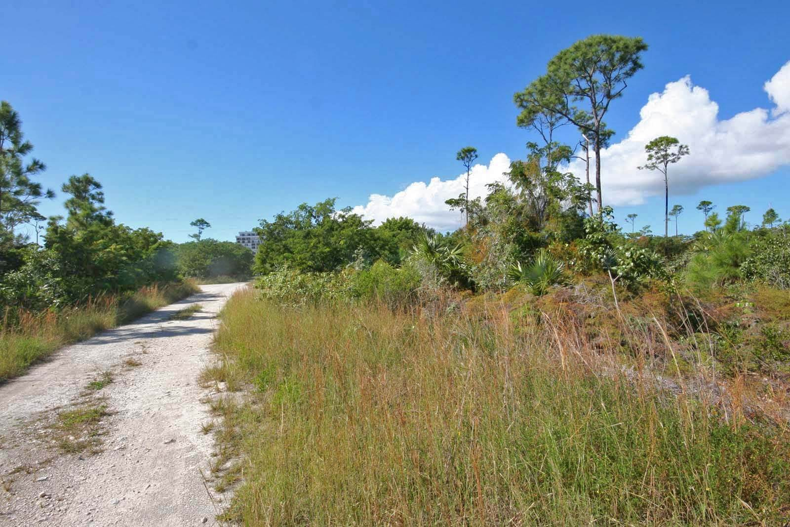 Land for Sale at Excellent Investment Opportunity in Arden Forest Arden Forest, Freeport And Grand Bahama, Bahamas