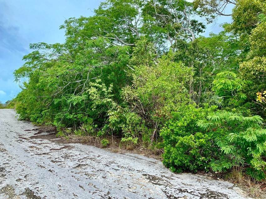 Land for Sale at Adjacent Lots at Oceania Heights Jimmy Hill, Exuma, Bahamas