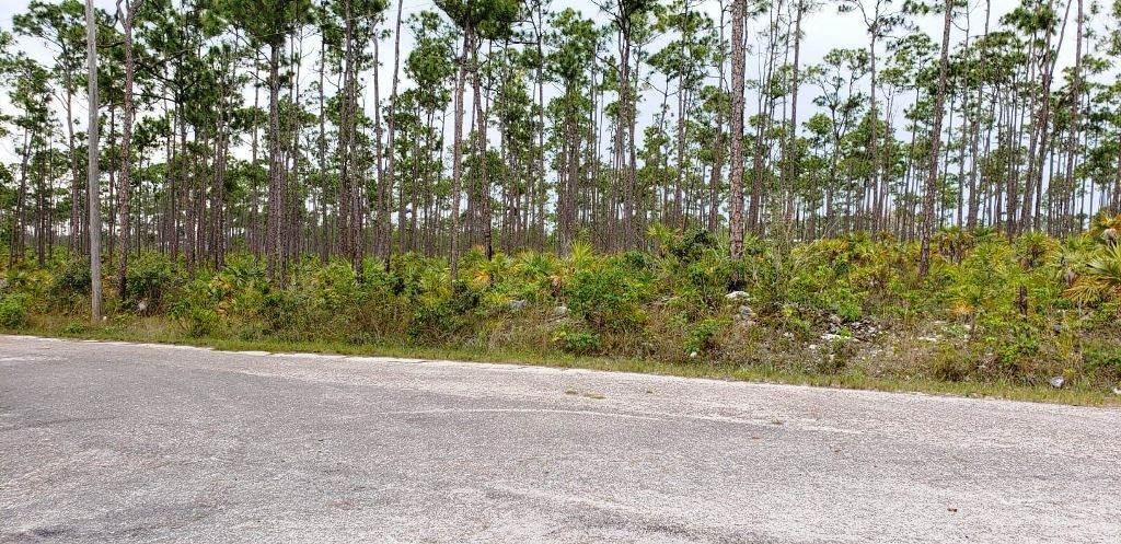 Land for Sale at Vacant Lot Investment Shannon Country Club Area - MLS 37719 Shannon County Club, Freeport And Grand Bahama, Bahamas