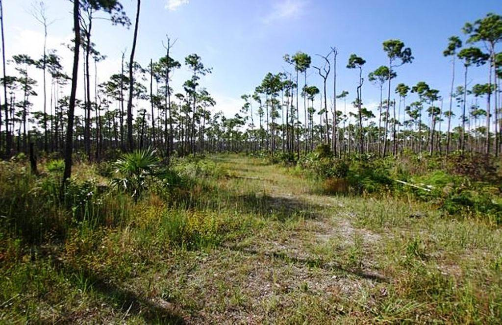 Land for Sale at Lucaya Estates Investment Property - great location! MLS 37664 Lucaya Estates, Freeport And Grand Bahama, Bahamas