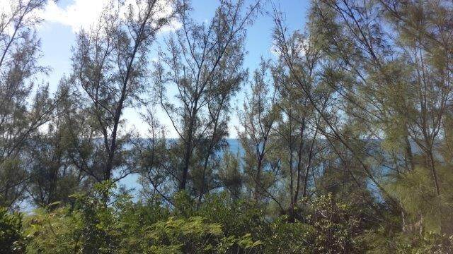 Land for Sale at Rainbow Bay Waterfront, Section D, Block 39, Lot 61 - MLS 39588 Rainbow Bay, Eleuthera, Bahamas