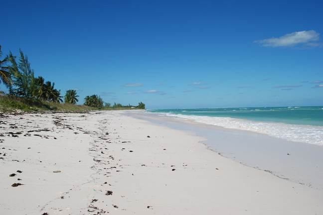 Land for Sale at Beachfront Lot - MLS 40481 in Greenwood Estates, South Cat Island Greenwood Estates, Cat Island, Bahamas