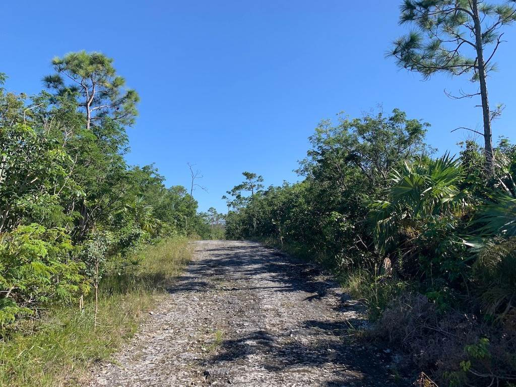 Land for Sale at Investment Multi-family Property in Richmond Park Richmond Park, Freeport And Grand Bahama, Bahamas