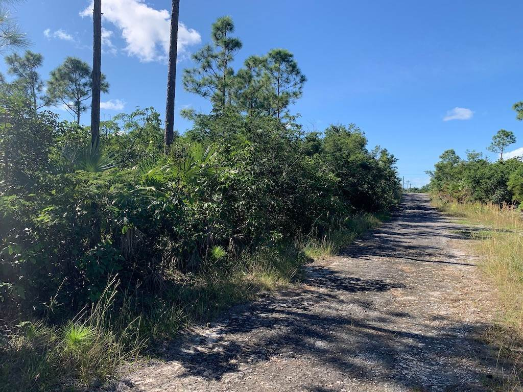 Land for Sale at Large Multifamily Property in Richmond Park - MLS 42194 Richmond Park, Freeport And Grand Bahama, Bahamas