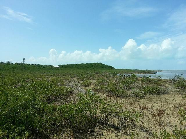 7. Land for Sale at Jumbey Hill Long Island, Bahamas