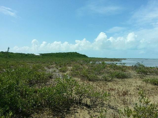 8. Land for Sale at Jumbey Hill Long Island, Bahamas