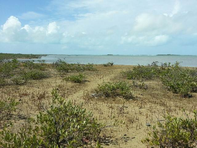 9. Land for Sale at Jumbey Hill Long Island, Bahamas