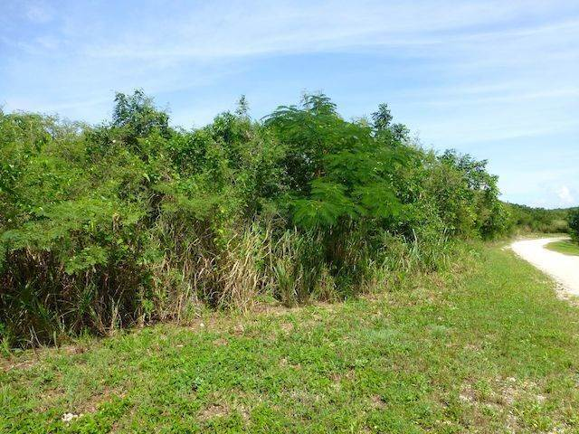 11. Land for Sale at Fabulous Estate Lot G-1, Pineapple Hills in Gregory Town, Eleuthera! Gregory Town, Eleuthera, Bahamas