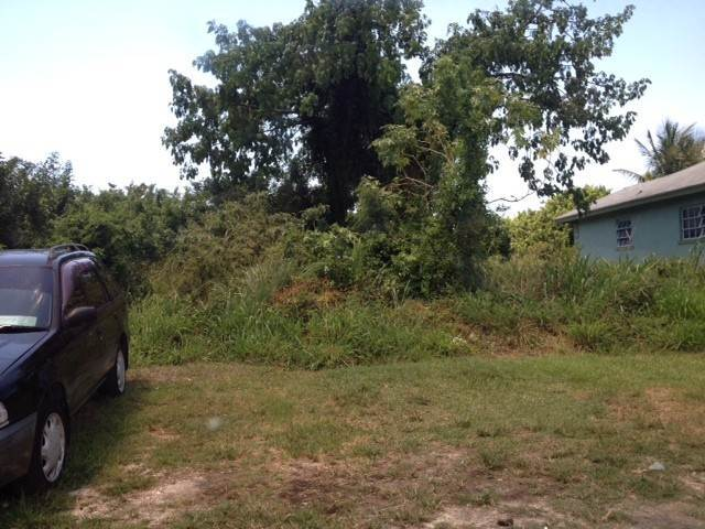 2. Land for Sale at Acreage at South Hillside Estate Nassau And Paradise Island, Bahamas