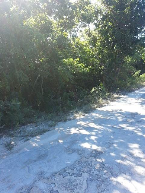 2. Land for Sale at Large Elevated Lot Stella Maris, Long Island, Bahamas