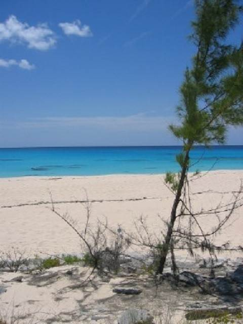 2. Land for Sale at Large Oceanfront Lot With Salt Pond Rum Cay, Bahamas