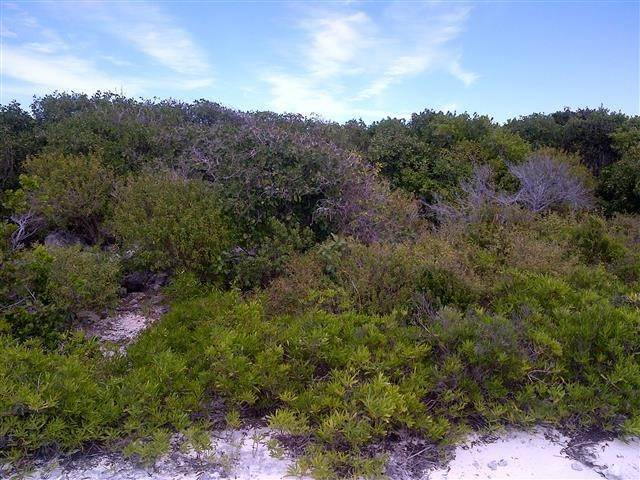 2. Terreno por un Venta en Affordable lot in San Salvador - MLS 32439 Columbus Landings, San Salvador, Bahamas