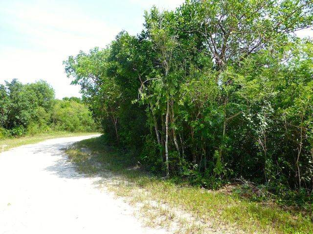 9. Land for Sale at Fabulous Estate Lot G-1, Pineapple Hills in Gregory Town, Eleuthera! Gregory Town, Eleuthera, Bahamas