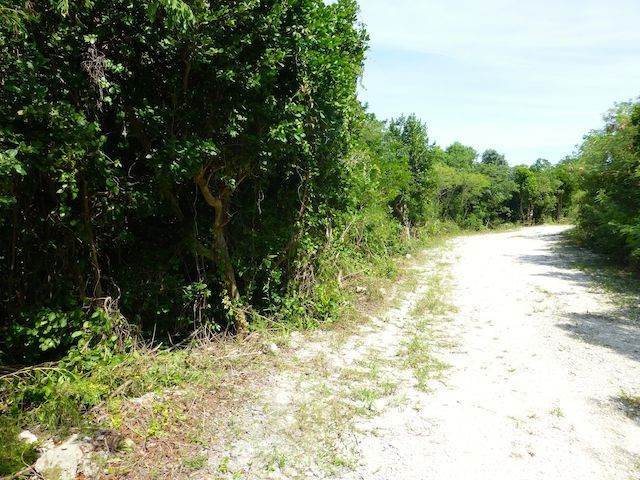 8. Land for Sale at Fabulous Estate Lot G-1, Pineapple Hills in Gregory Town, Eleuthera! Gregory Town, Eleuthera, Bahamas
