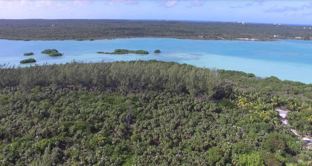 14. Land for Sale at Sea-to-Sea Beachfront Lot on Windermere Island - MLS 44293 Windermere Island, Eleuthera, Bahamas