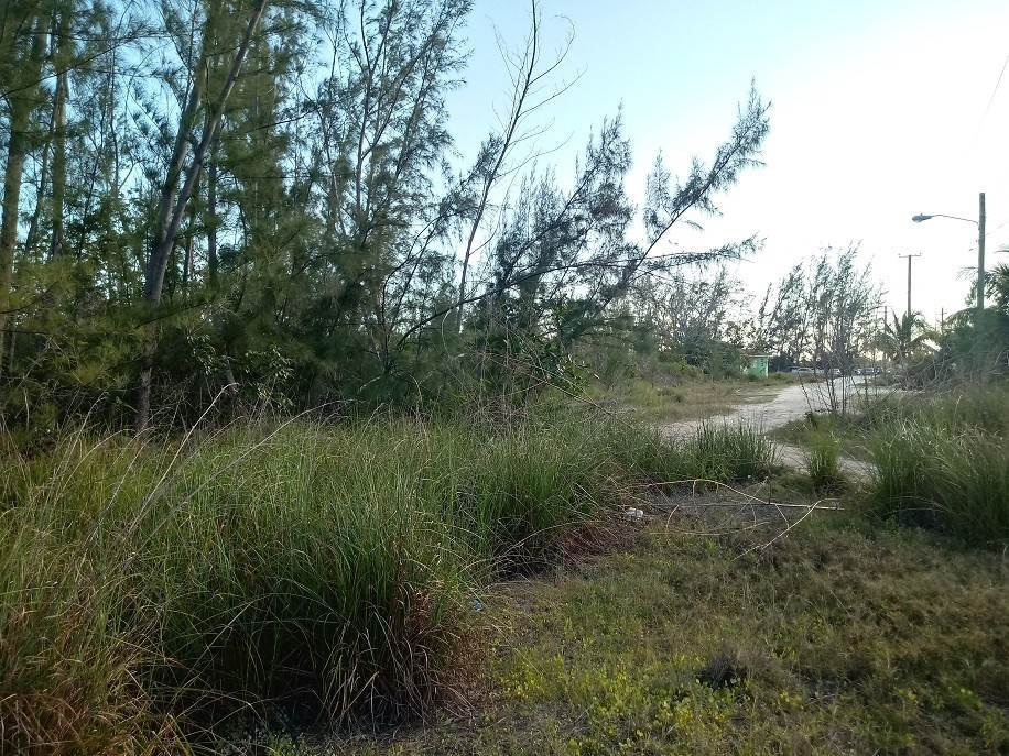 5. Commercial for Sale at 2.98 Acres on Sale - South Beach, Blue Hill Road South Beach Estates, Nassau And Paradise Island, Bahamas