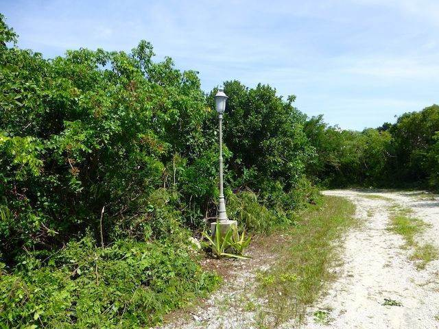 10. Land for Sale at Fabulous Estate Lot G-1, Pineapple Hills in Gregory Town, Eleuthera! Gregory Town, Eleuthera, Bahamas