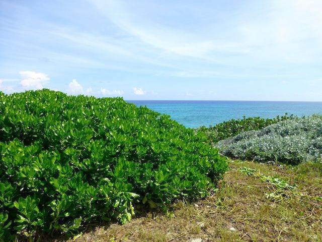 3. Land for Sale at Fabulous Estate Lot G-1, Pineapple Hills in Gregory Town, Eleuthera! Gregory Town, Eleuthera, Bahamas
