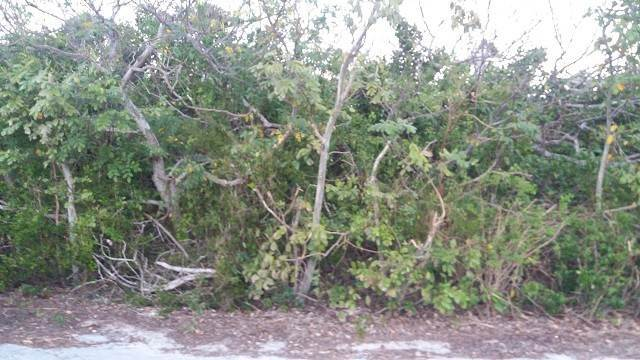 3. Terreno por un Venta en Affordable Lot in Stella Maris - MLS 29654 Stella Maris, Long Island, Bahamas
