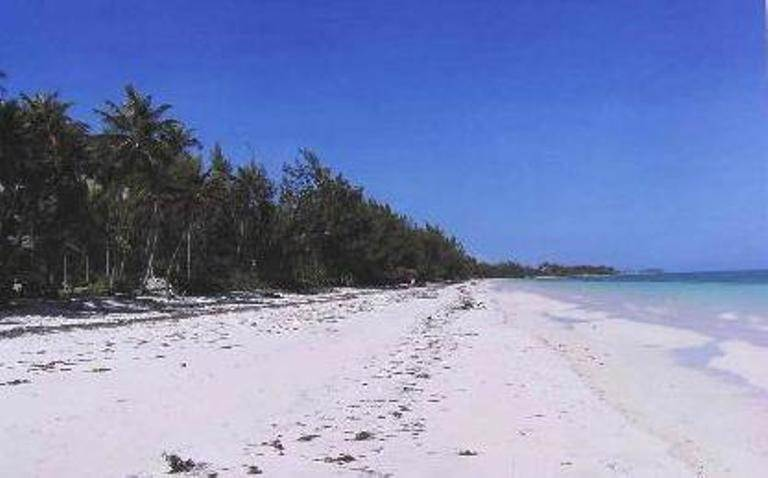 3. Single Family Homes for Sale at Beach cottage with development acreage Congo Town, Andros, Bahamas