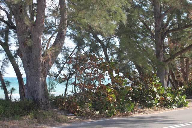 3. Land for Sale at Beautiful Eastern Road Lot Eastern Road, Nassau And Paradise Island, Bahamas