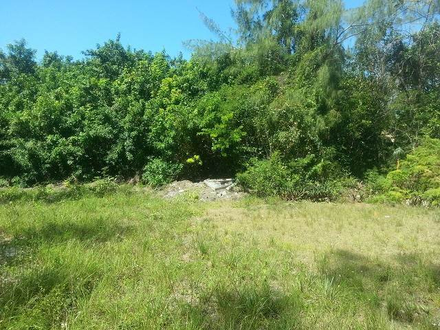 3. Land for Sale at Great lot for a starter home Coral Harbour, Nassau And Paradise Island, Bahamas