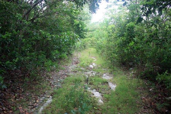 2. Terreno por un Venta en Close to Nature, Close to Town. Have it both ways, Great Cistern, Abaco MLS 19032 Marsh Harbour, Abaco, Bahamas